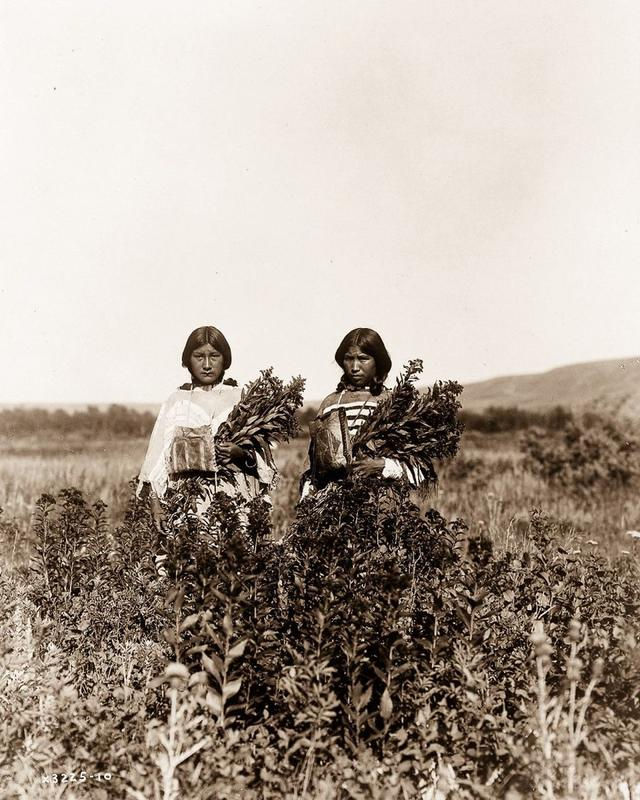 How Native Americans Lived 27