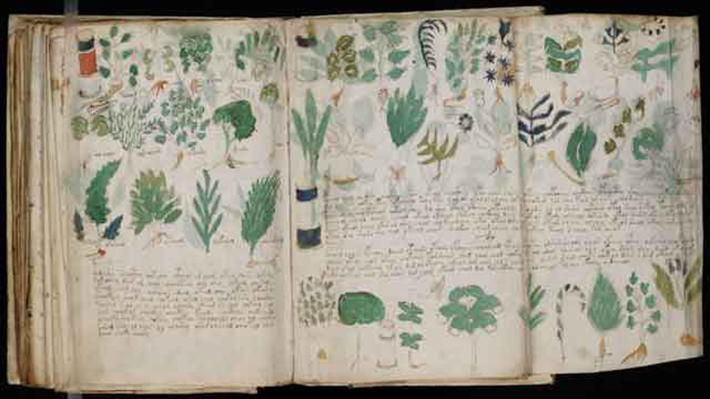 archaeological discoveries - voynich manuscript