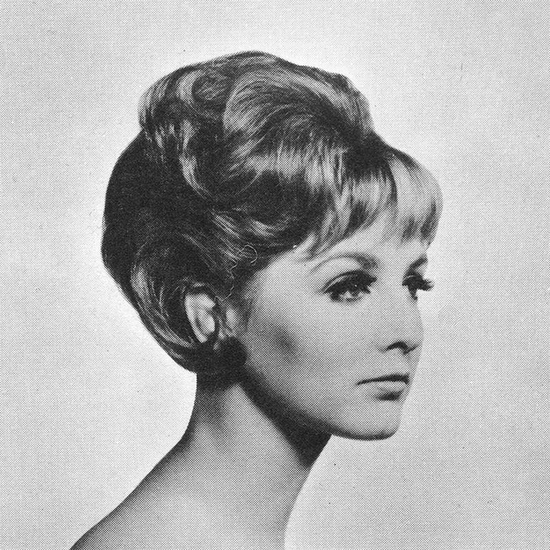 1960s Hairstyle 19