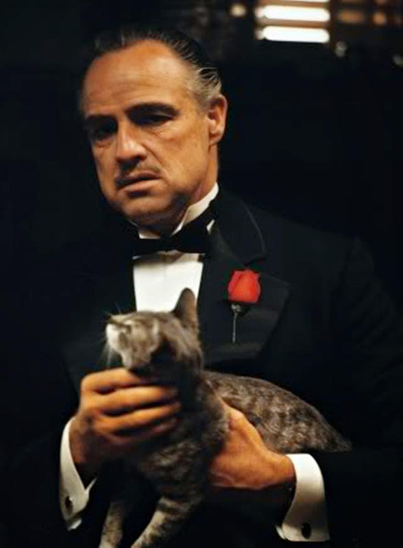 The-GodFather-11